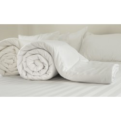 Anti Allergy  Duvets